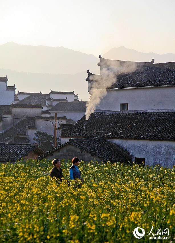 摄影爱好者徜徉于黟县卢村的油菜花间。据了解,卢村以规模宏大、雕刻精美的木雕楼群著称,享有中国木雕第一楼的美誉。