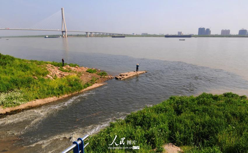 安徽安庆:市政排水口污水直接向长江排放