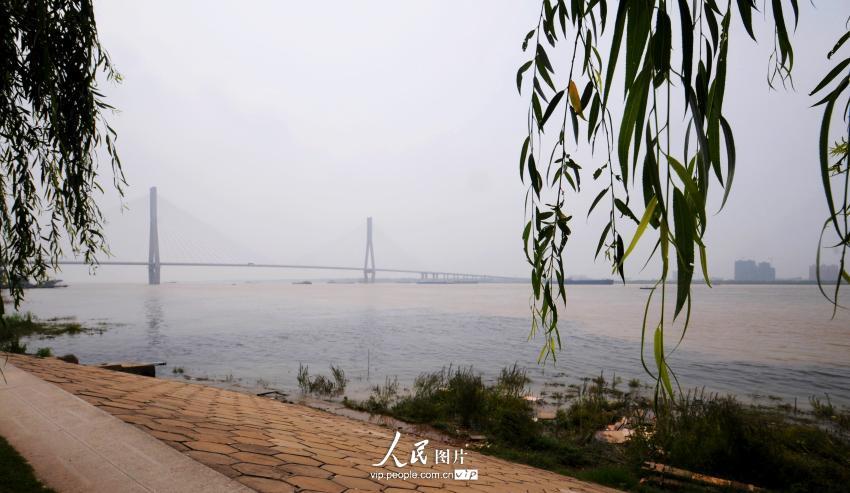 安徽安庆:市政排水口污水直接向长江排放【3】