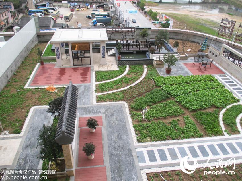 """安徽岳西:房屋楼顶造出""""空中菜园"""""""