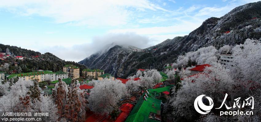 2015年11月25日,受强冷空气影响,江西庐山风景名胜区出现2015年入冬来首场雾凇雨淞双景观。(吴健/人民图片)