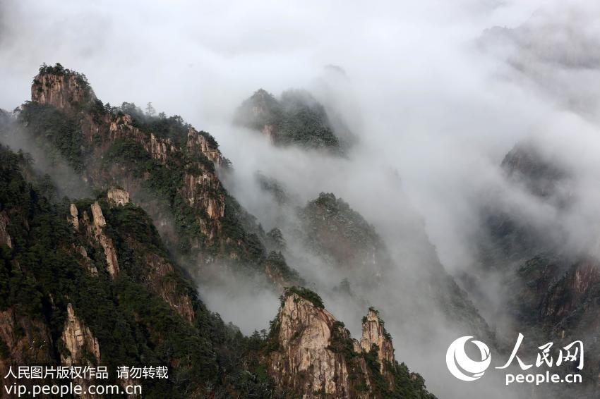 2015年11月25日,在雪后的黄山风景区拍摄的蔚为壮观的云海美景。(施亚磊/人民图片)