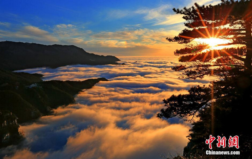 庐山持续出现云海景观 云雾缭绕美不胜收【4】