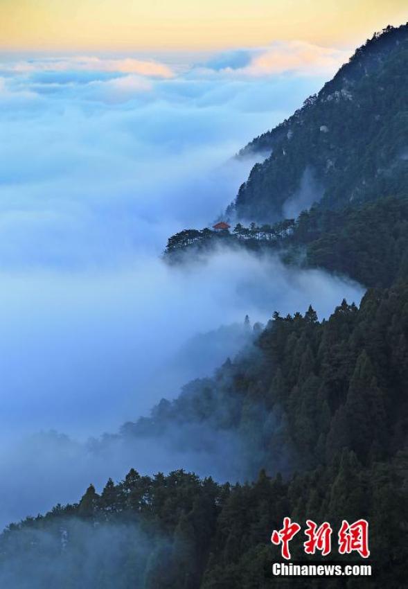 庐山持续出现云海景观 云雾缭绕美不胜收【5】