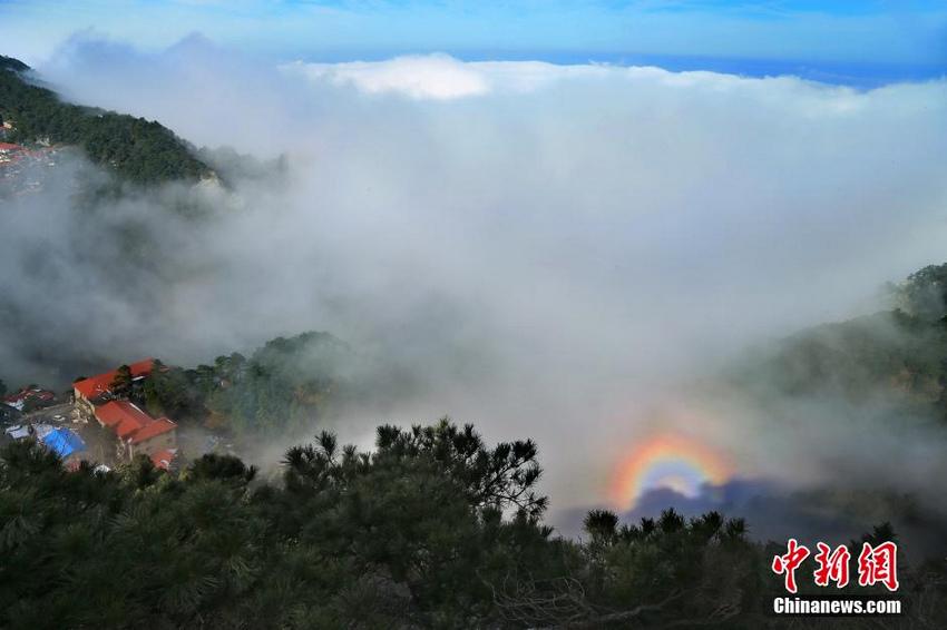 庐山持续出现云海景观 云雾缭绕美不胜收