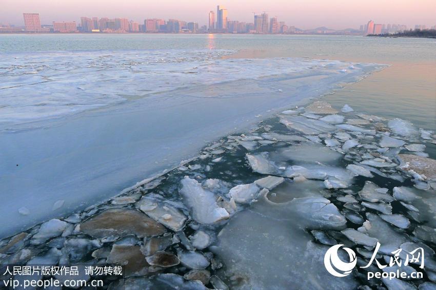 """寒潮退去 青岛唐岛湾现罕见大面积""""冰排""""景观"""