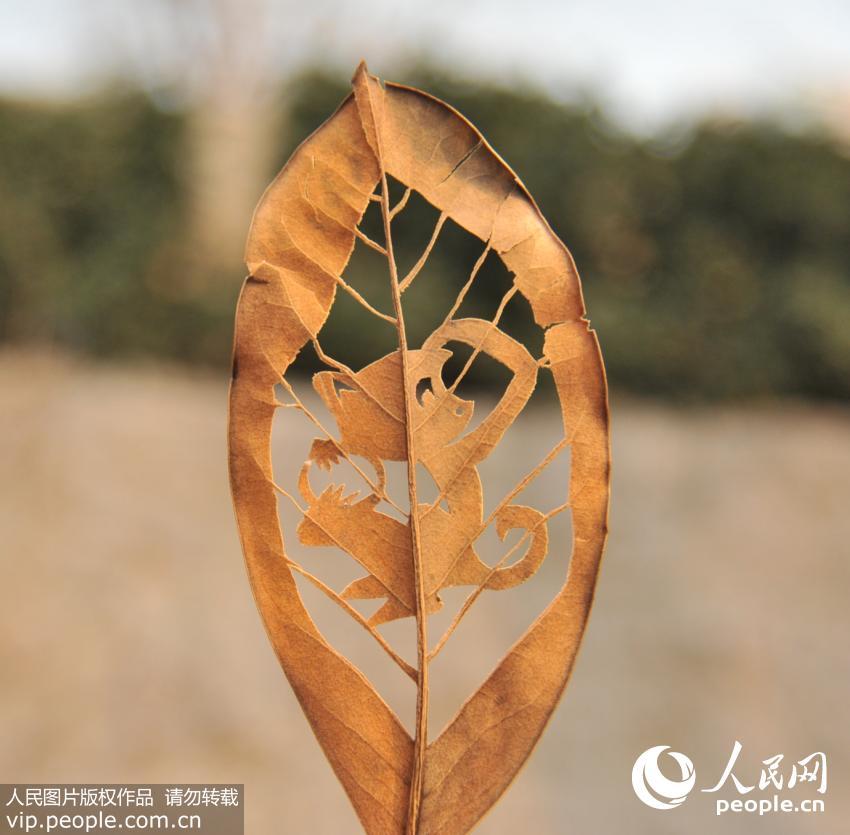 树叶手表背景素材