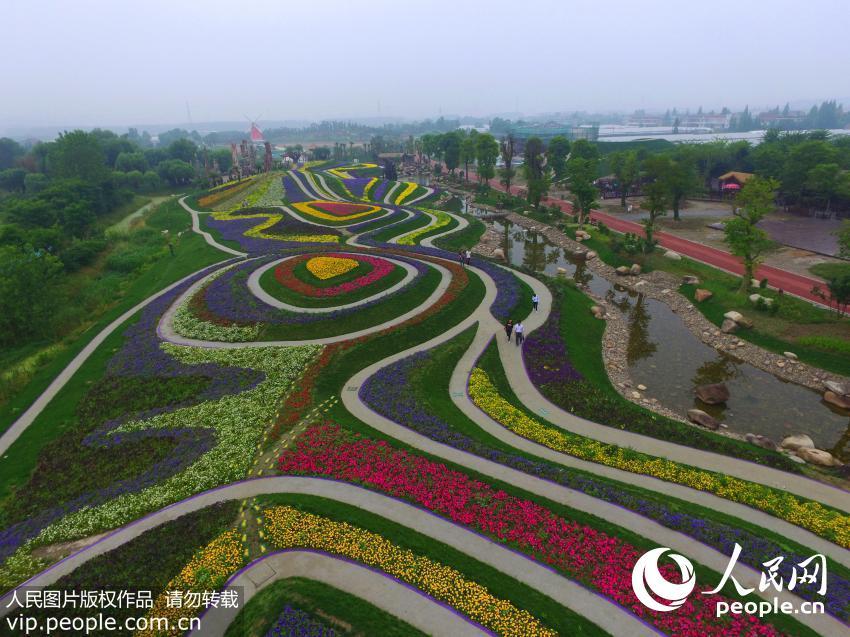 壁纸 成片种植 风景 平面图 植物 种植基地 桌面 850_637