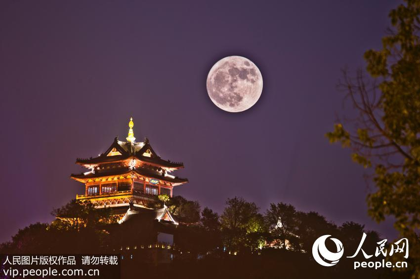 11月14日晚,本年度最大最圆的月亮(又称超级月亮)现身天宇。据天文学家介绍,超级月亮是指月球运行到轨道上最接近地球的点的同时,适逢满月。地面上人们看到的月亮比平常会更大更亮一些,也是摄影和天文爱好者拍摄、观测月亮难得的好时机。 (声明:凡带有人民图片字样图片,系版权图片,受法律保护,使用(含转载)需付费,欢迎致电购买:010-65363647或021-63519288。)
