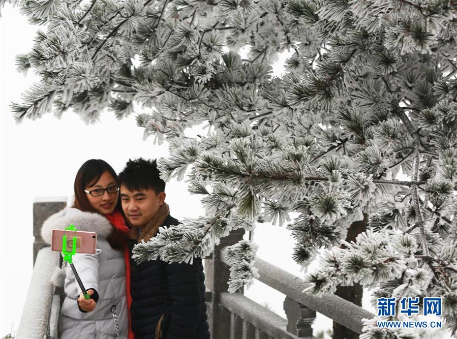 日,游客在湖南张家界天门山景区拍摄雾凇.当日,受大幅降温天图片