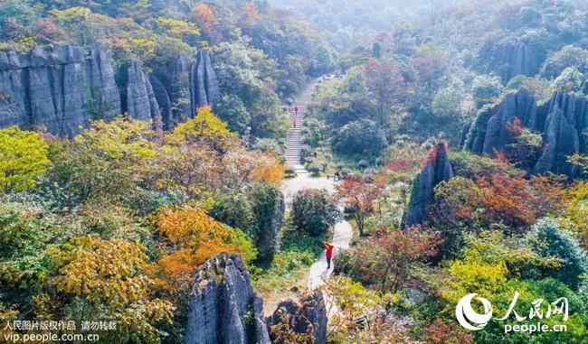 点击下载此图片   山王坪位于重庆市南川区山王坪镇境内,是首个国家