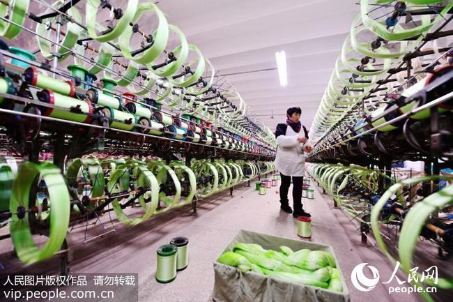 江苏海安:推进桑茧丝绸产业提质增效(2018.2.7)2版