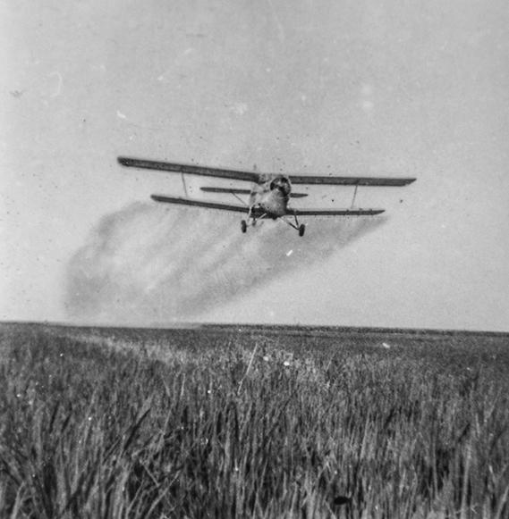 1970年,北大荒执飞运五,进行农业作业。作者:陈松